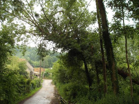 Quelques photos de Brancourt-en-Laonnois